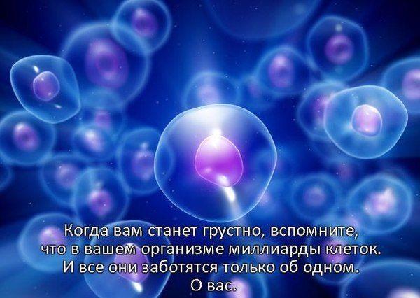 Флудилка - 5 - Страница 3 559507e188f1