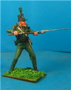 VID soldiers - Napoleonic british army sets 43d0dd17707ft