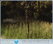 Cinema 4D +Corona render Ee9c60d1bee4