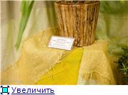 Выставка орхидей в Государственном биологическом музее им. К.А.Тимирязева C1bac7e7a21et