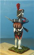 VID soldiers - Napoleonic french army sets 4f43a843c578t