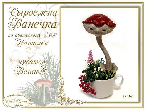 Награды Юлии (coon) 1cd5b279500ft
