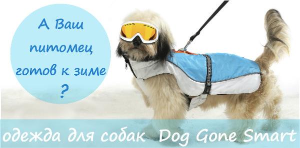 Интернет-магазин Red Dog- только качественные товары для собак! - Страница 4 Aa9c1e67d02f