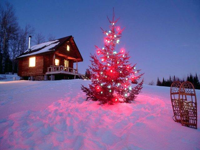 Новогоднее настроение и Поздравлялка с 2012)) E5c288c0f560