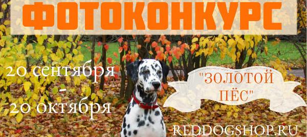 Интернет-магазин Red Dog- только качественные товары для собак! - Страница 4 6ac2bccb64c2