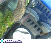Черный (15 литров) D581d3451798t