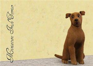 Собаки - Страница 5 46aea55fed40