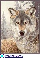 Планируем совместный отшив волков!!! - Страница 2 D2355dc788d2t