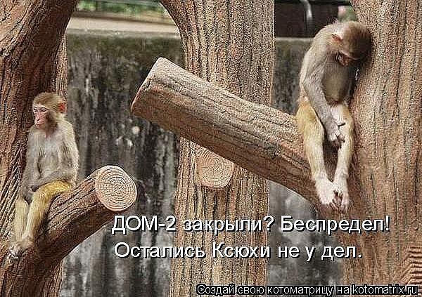 Ксения Бородина 6a5519539d36