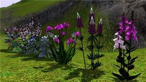 Цветы - Страница 5 8481533cb4cb