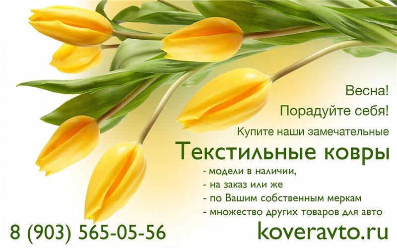 KoverAvto - Велюровые АВТОКОВРИКИ - Страница 2 422fe39228d6
