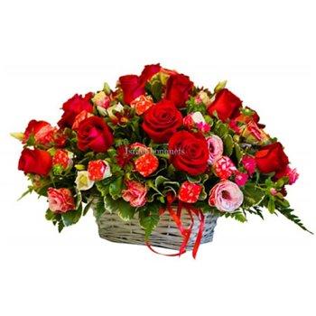 Поздравляем с Днем Рождения Наталью (Natefi) C608ea2fa019t