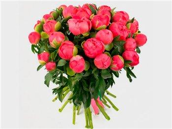 Поздравляем с Днем Рождения Елизавету (Елизаветта) 2c6065acef43t