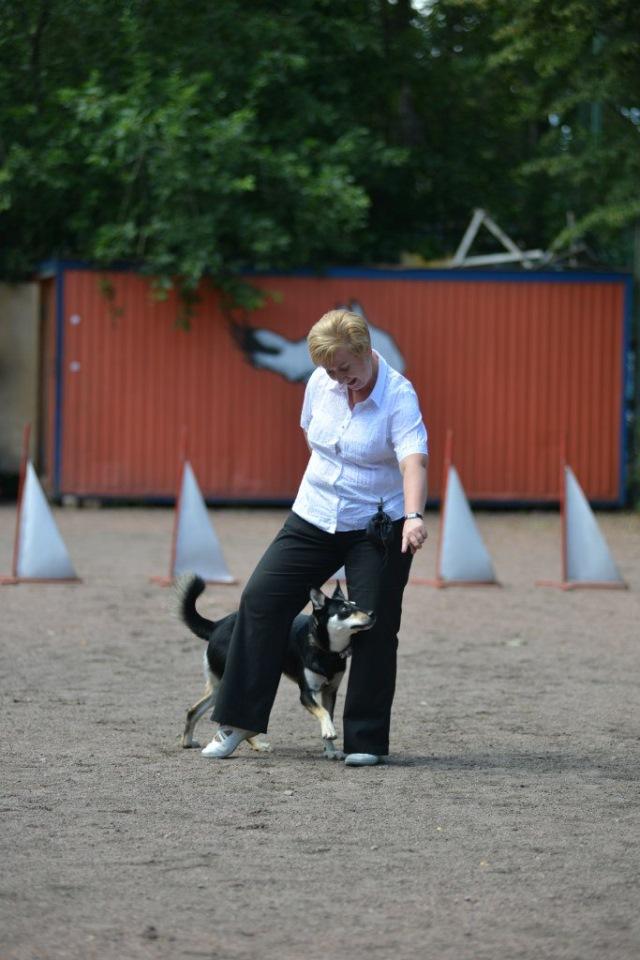 Танцы с собаками - Страница 3 Adaa5b520248