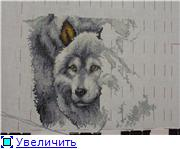 Совместные танцы с волками от Vervaco - Страница 8 8af3ec1c2c02t