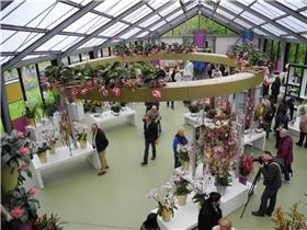 Рай тюльпанов или Кёкнхов - 2012 2ddcf562890bt