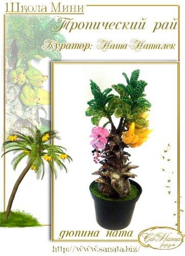 Выпуск работ Школы мини - Тропический рай 4688ae7f325bt
