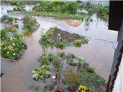 Потоп на Амуре и после - Страница 2 F6cc60d19aact