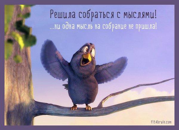 Улыбашки))) 37e0ffaf0ee4