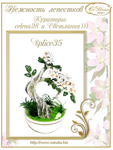 Успехи Светланки))) 8425f670d26d