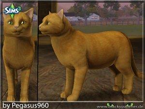 Кошки 3f67148dfcd2