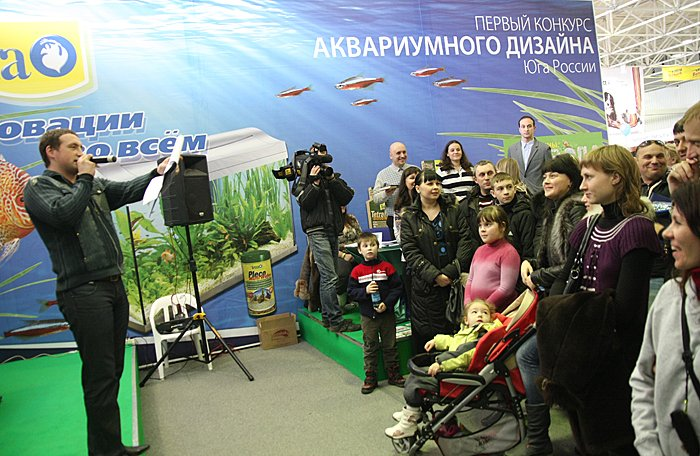 Акваконкурс Юга России 2012 2cdc93490f77