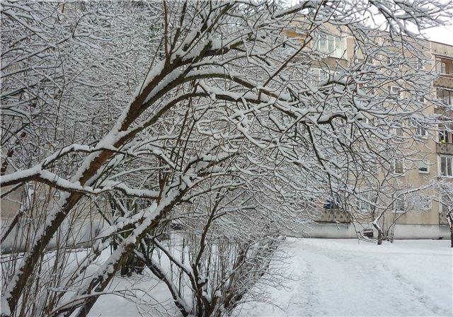 Зимняя сказка на наших фотографиях - Страница 2 1277f2580d6d