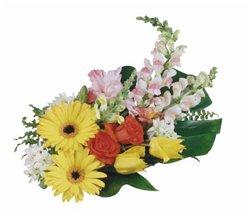 Поздравляем с Днем Рождения Наталию (mdoona) 24ca1734238ct