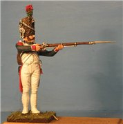 VID soldiers - Napoleonic french army sets E46d088027e9t