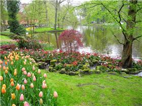 Рай тюльпанов или Кёкнхов - 2012 Fa7a0034c753t