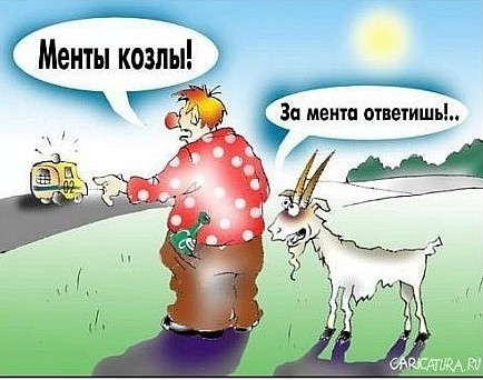 Карикатуры 53dd8f4d3a7e