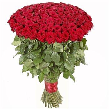 Поздравляем с Днем Рождения Марину (МаринаНик) E36c4e5af72ft