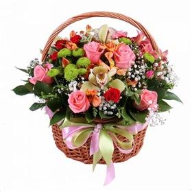 Поздравляем с Днем Рождения Ольгу (Амалия) F6015790d194t