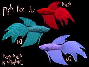 Все для аквариумов, водоемов - Страница 5 0d0c9c1beb99