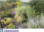 Cад Людмилы Ивановой из черкасс 27a35de8fd1ct