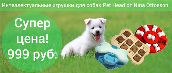 Интернет-магазин Red Dog- только качественные товары для собак! - Страница 3 09a4f3353c79