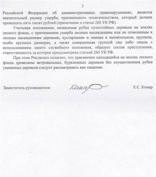 В РФ вводят уголовную ответственность за сбор дров в лесу A56184c95567
