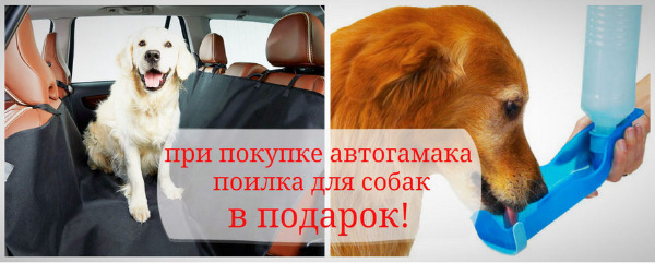 Интернет-зоомагазин Red Dog: только качественные товары для  - Страница 11 20d42798c378