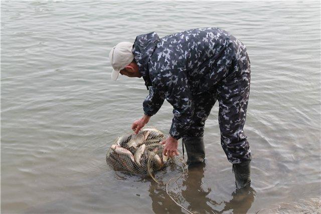 Рыбалка 976cd9e74200