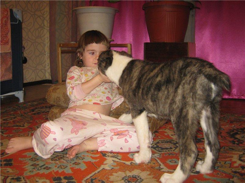 Наша Тара - дочка Доры и Башика - Страница 4 0bc8512e1f4b