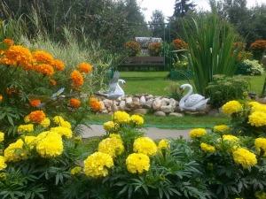 Осенняя болталка - Страница 5 Ecff7f90836c