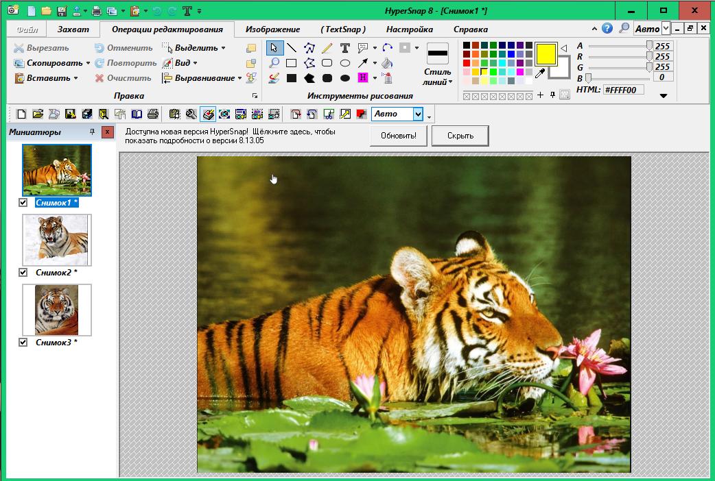 HyperSnap - инструмент для захвата изображения 69353c7cbaf7