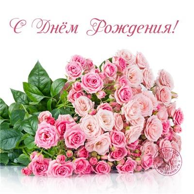 Поздравляем с Днем Рождения Ольгу (Ольга 1111) Cc9012ad4ba8t