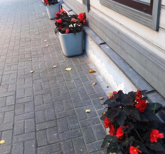 Осень, осень ... как ты хороша...( наше фотонастроение) - Страница 8 F2d59547a259