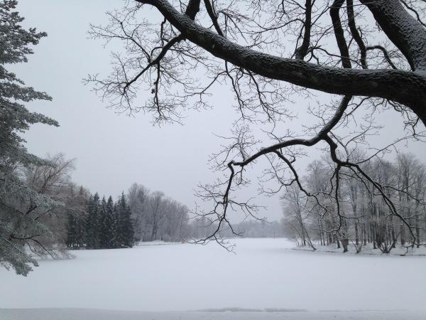 """"""" Есть городок в одном прекрасном парке...""""  ( Пушкин и Екатерининский парк ) - Страница 4 357d3102c44f"""