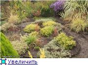 Cад Людмилы Ивановой из черкасс Bb6149871278t