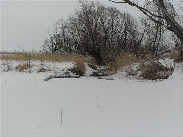 Зимняя рыбалка - Страница 2 B62f8a621282