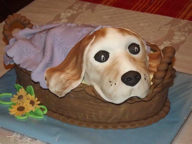 Собачьи кулинарные рецепты D81125197d8e