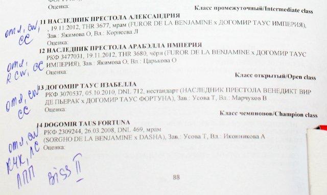 МОНО (КЧК) + САС в Новосибирске 10a24cb27e87