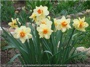 Весна идёт... - Страница 2 C60fe3c0d7a6t